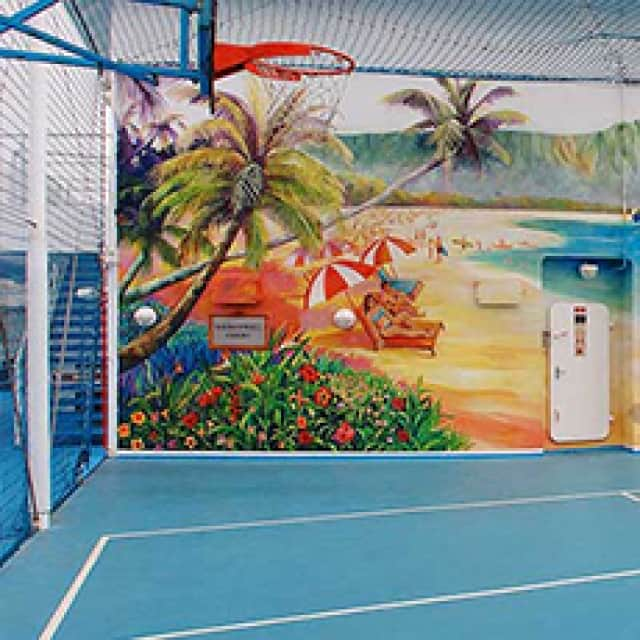 Basketballvolleyball Court